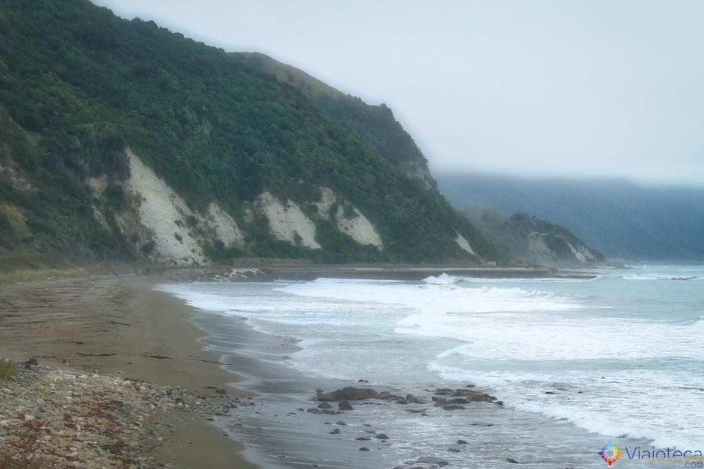 Viagem Trem Nova Zelândia - Coastal Pacific 116