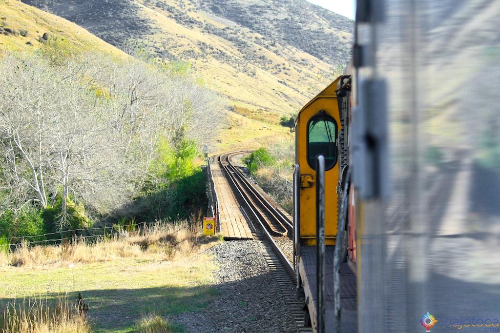 Viagem Trem Nova Zelândia - Coastal Pacific 126