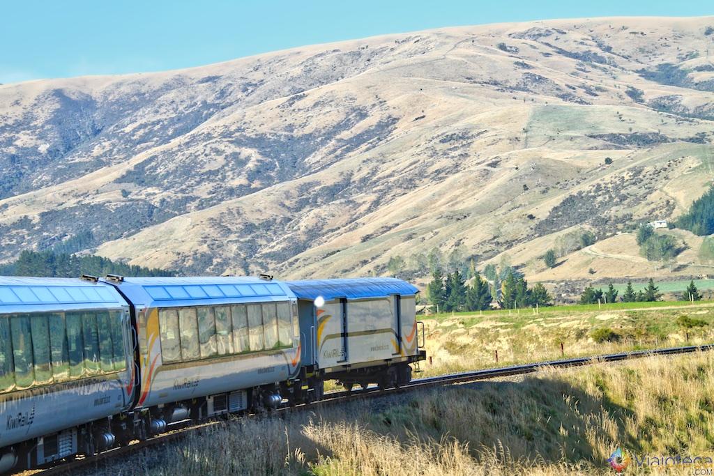 Viagem Trem Nova Zelândia - Coastal Pacific 129