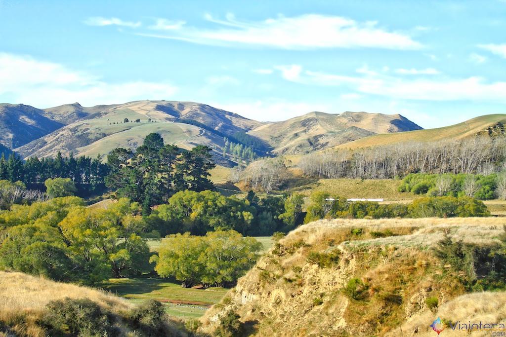 Viagem Trem Nova Zelândia - Coastal Pacific 130