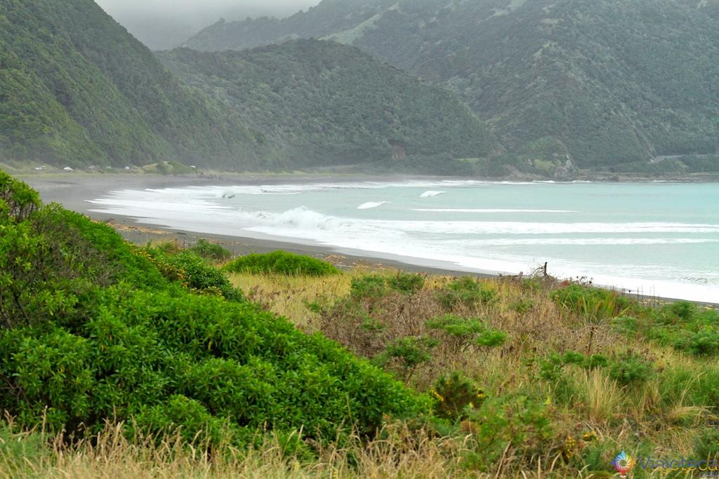 Viagem Trem Nova Zelândia - Coastal Pacific 26