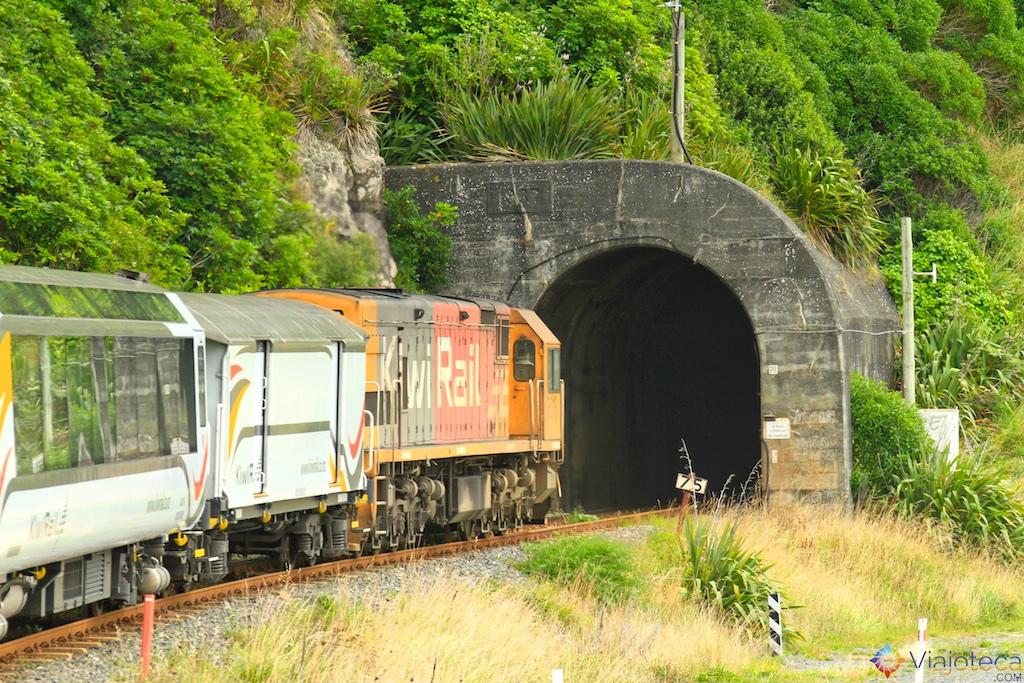 Viagem Trem Nova Zelândia - Coastal Pacific 33