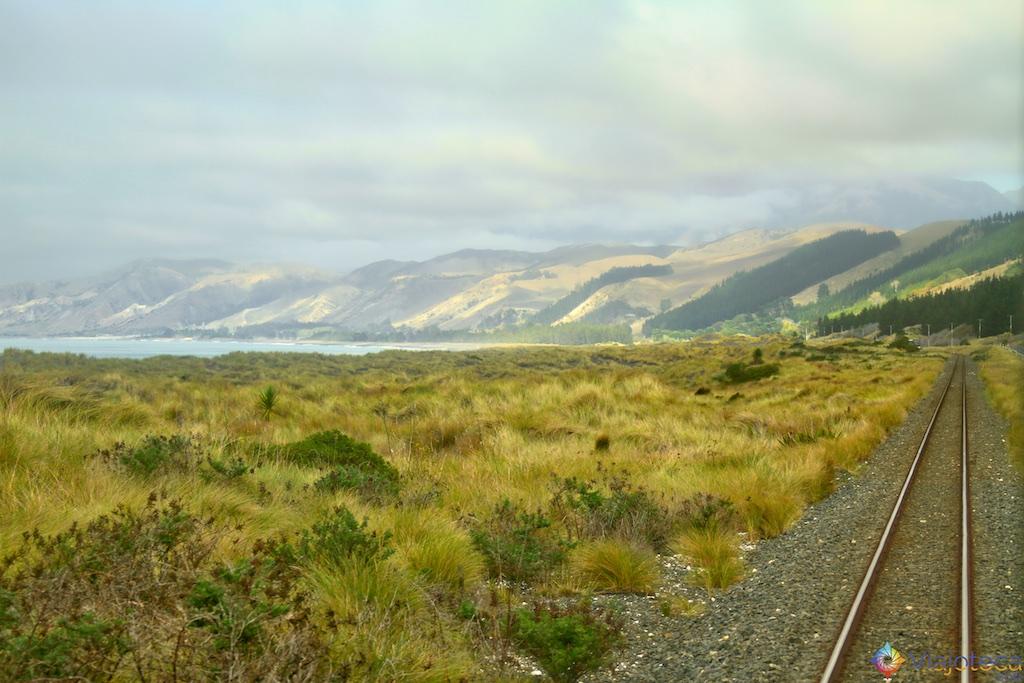 Viagem Trem Nova Zelândia - Coastal Pacific 43
