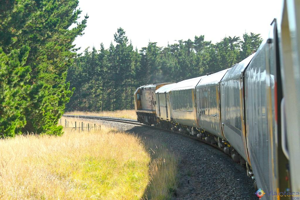 Viagem Trem Nova Zelândia - Coastal Pacific 47