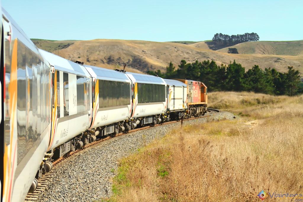 Viagem Trem Nova Zelândia - Coastal Pacific 60