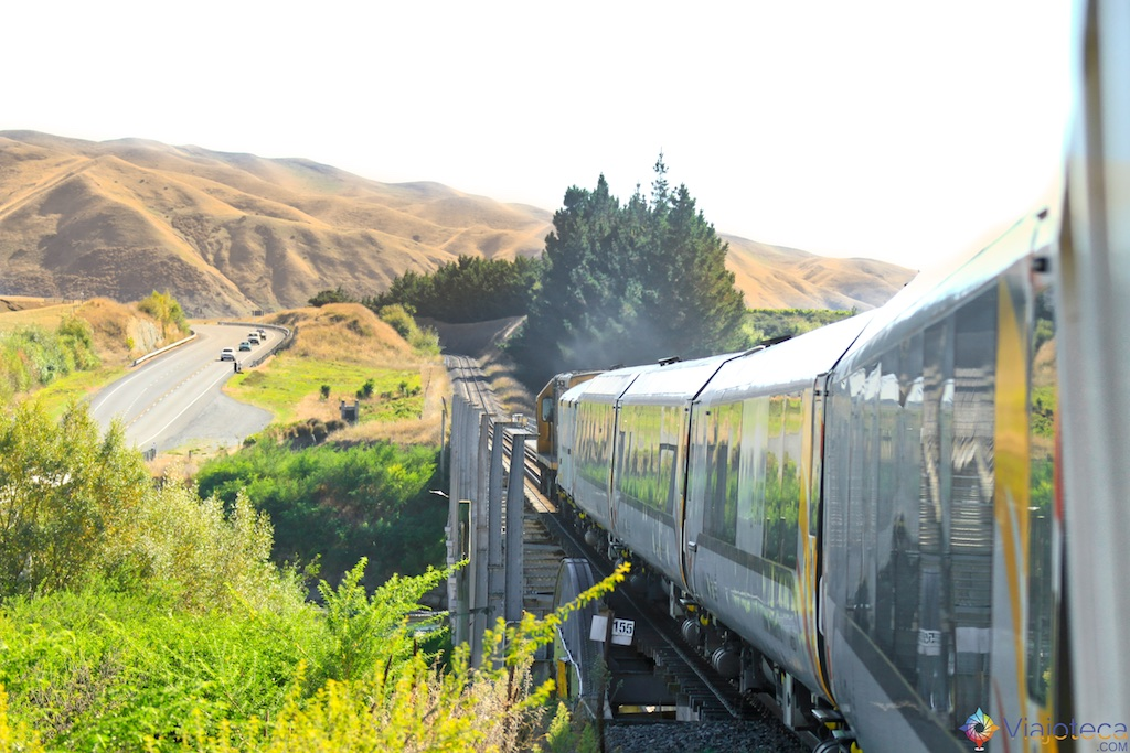Viagem Trem Nova Zelândia - Coastal Pacific 64