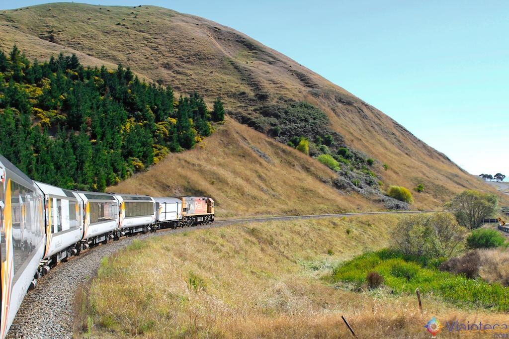 Viagem Trem Nova Zelândia - Coastal Pacific 68