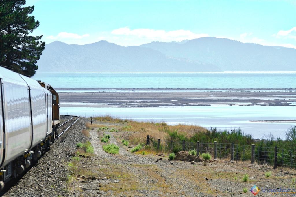 Viagem Trem Nova Zelândia - Coastal Pacific 71