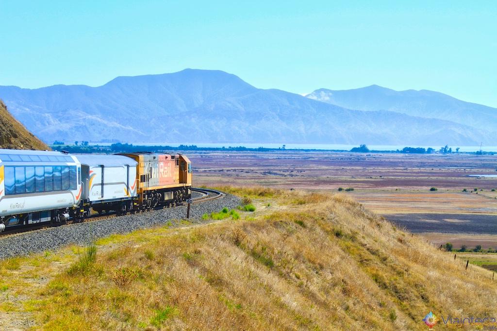 Marlborough sounds Viagem Trem Nova Zelândia - Coastal Pacific