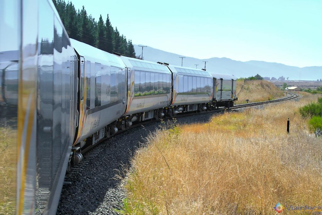 Viagem Trem Nova Zelândia - Coastal Pacific 83