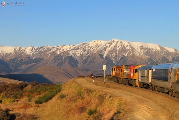 Viagem Trem na Nova Zelândia- TranzAlpine Canterbury