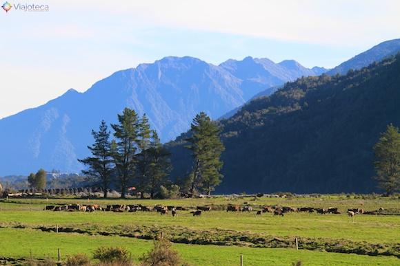Viagem Trem na Nova Zelândia- TranzAlpine103