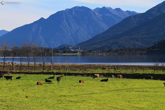Viagem Trem na Nova Zelândia- TranzAlpine105