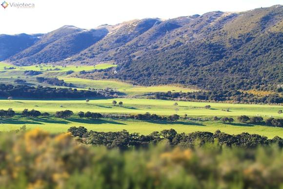 Viagem Trem na Nova Zelândia- TranzAlpine14