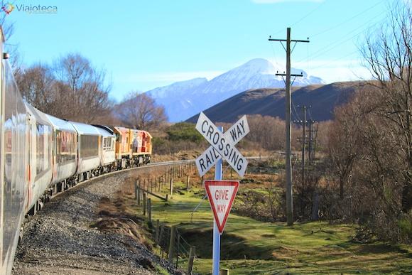 Viagem Trem na Nova Zelândia- TranzAlpine23