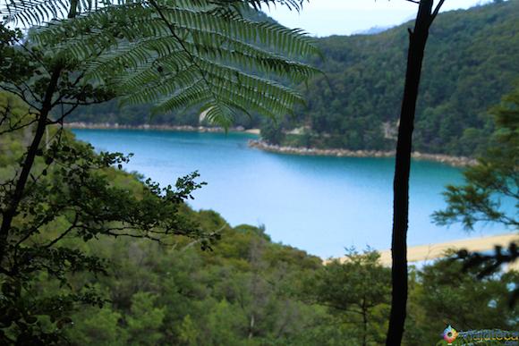 Visual ao longo da trilha no Abel Tasman National Park na Nova Zelândia