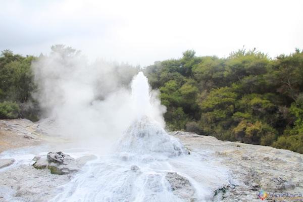 Wai - O - Tapu Rotorua Nova Zelândia 022