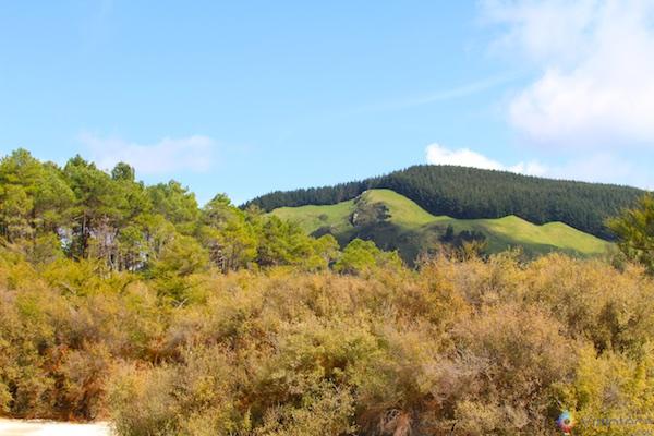 Wai - O - Tapu Rotorua Nova Zelândia 081