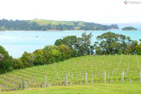 Waiheke Island - Ilha das Vinicolas em Auckland 15