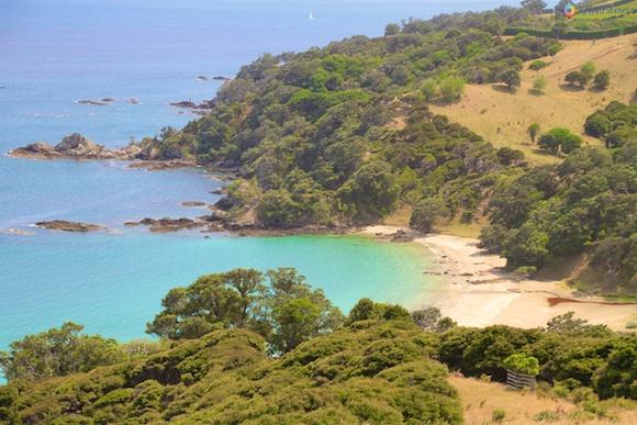 Waiheke Island - Ilha das Vinicolas em Auckland 50