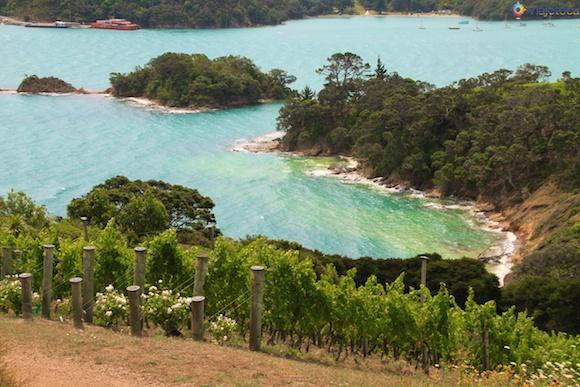 Waiheke Island - Ilha das Vinicolas em Auckland 79