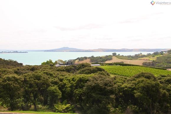 Waiheke Island - Ilha das Vinicolas em Auckland 87
