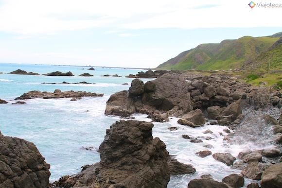Wairarapa Coast 19
