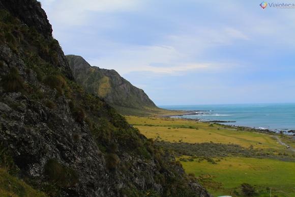 Wairarapa Coast 40