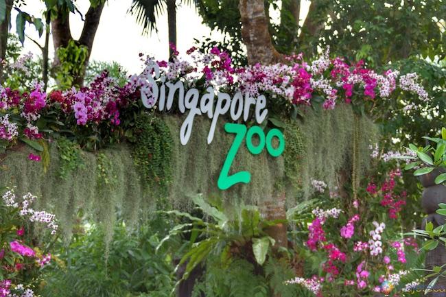 Entrada Zoológico no Zoológico de Singapura