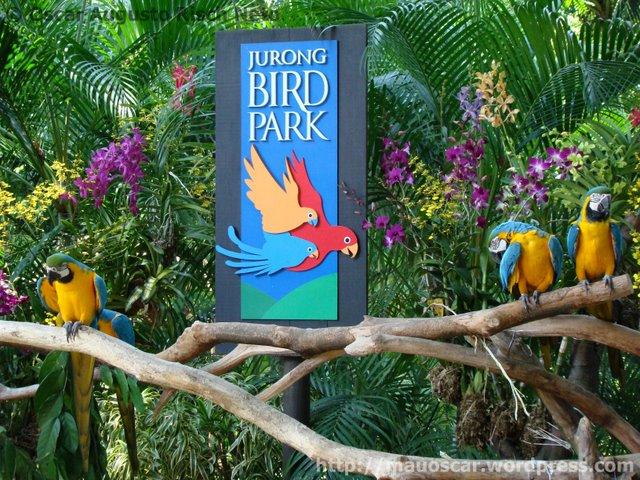 Araras Jurong BirdPark