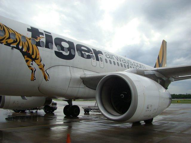 Cingapura Tiger Airways
