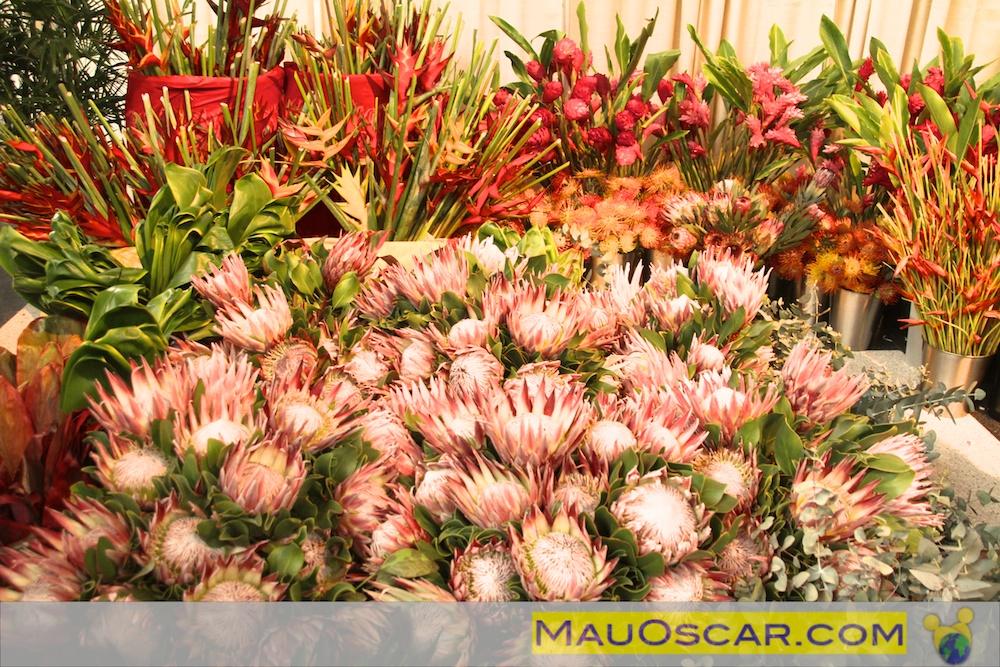 Flores do Hawaii