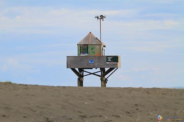 Bethells Beach na costa oeste de Aucklkand