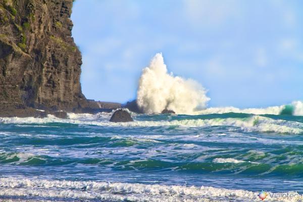 Mar da Tasmânia nas praias costas oeste de Auckland