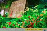 Islands of Aloha - Philadelphia Flower Show 2012