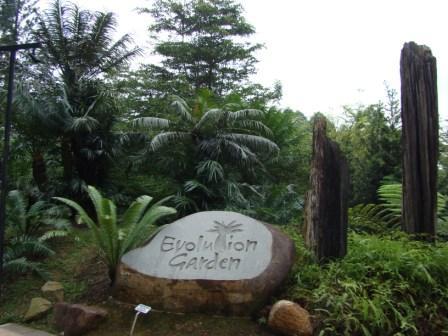 Jardim Evolucao Singapura