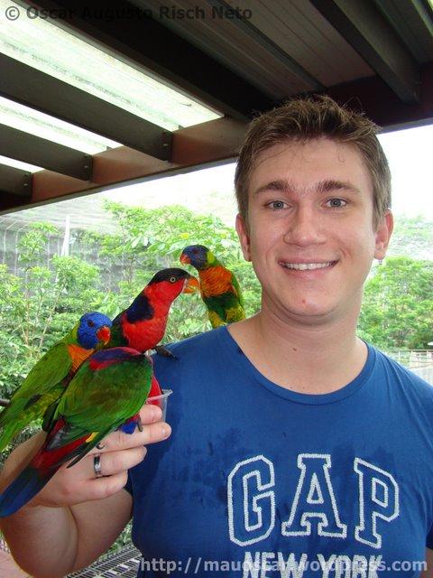 Jurong BirdPark  Mau
