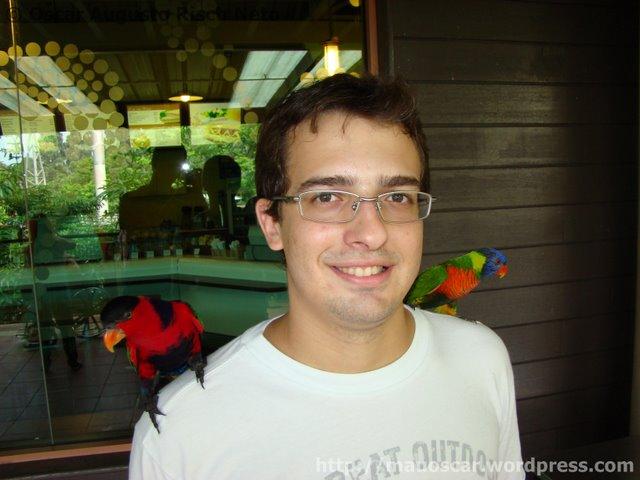Jurong BirdPark  Oscar e os Periquitos