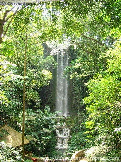 Jurong BirdPark  Waterfall