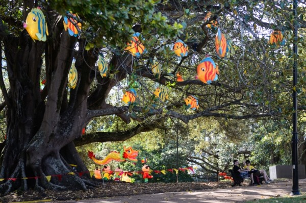 lantern-festival-gallery-13_800_530