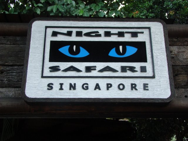 Night Safari Entrada