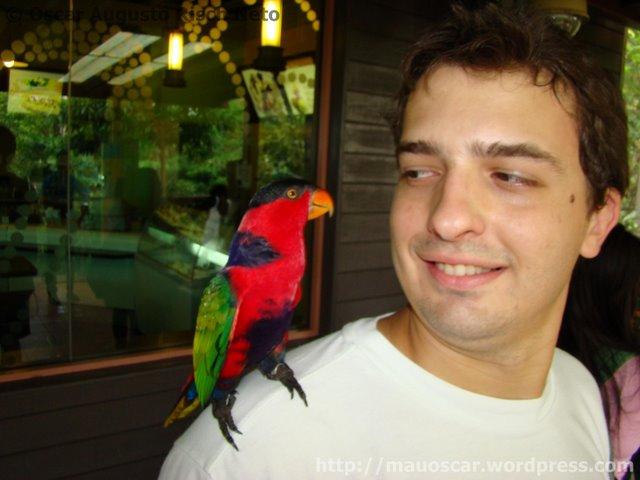 Oscar Jurong BirdPark