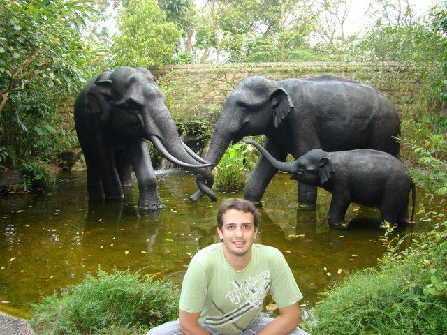 Zoo Singapura
